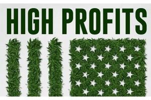 High-Profits-300x200
