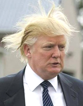 donaldtrumphairflying